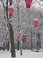 Kasteeltuinen arcen, winter.jpg